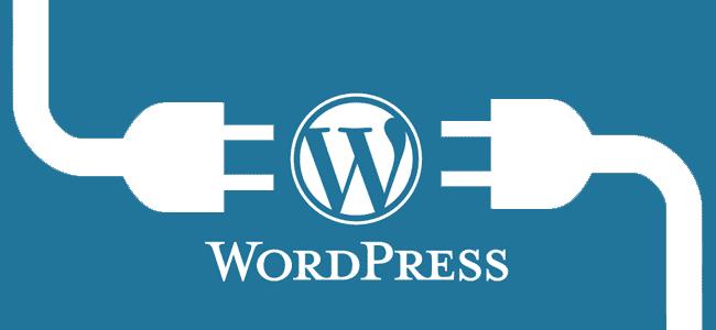 How to Install WordPress in Xampp (Bangla)